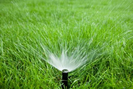 Advance Irrigation & Outdoor Solutions