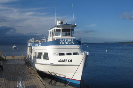 Acadian Sightseeing Nature Cruise