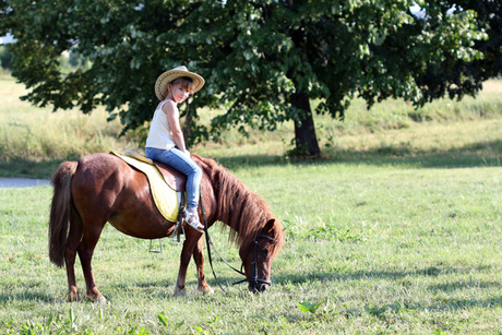 $50 Toward a Pony or Farm Party From Ponies 2 You