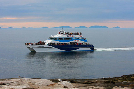 Bar Harbor Whale Watch