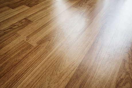 Sandless Floor Refinishing for One Room With Mr. Sandless